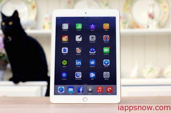 iPad Air(2)