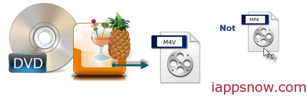 HandBrake Save DVD to M4V not MP4 Video File