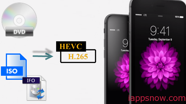 Convert DVD ISO/IFO files to H.265/HEVC MP4