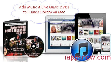 how to see itunes library capacity